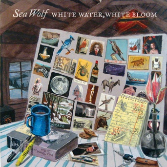 Sea-Wolf-White-Water-White-Bloom