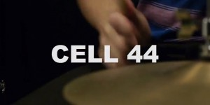 steph-cell-44