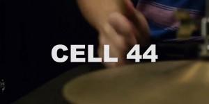 steph-cell-44